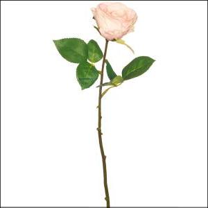 Fresh Line Rosebud Pink 43cm