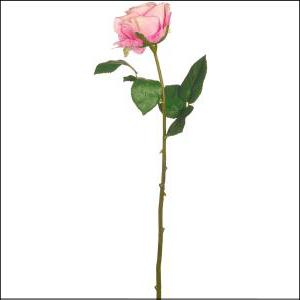 Fresh Line Rosebud Lavendar 43cm
