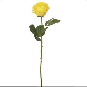 Fresh Line Rosebud Yellow 43cm