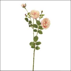 English Rose Spray Pink 60cm