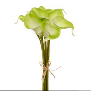 """14"""" Mini Calla Lily Green"""