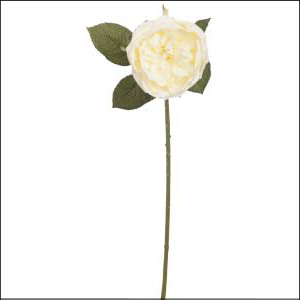 Single Damask Rose Spray Cream 62cm