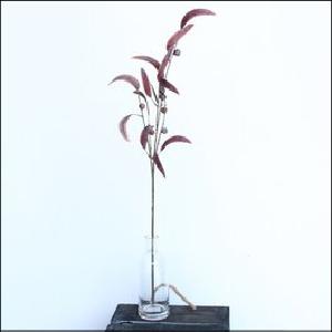 Eucalyptus Spray Burgundy 80cm
