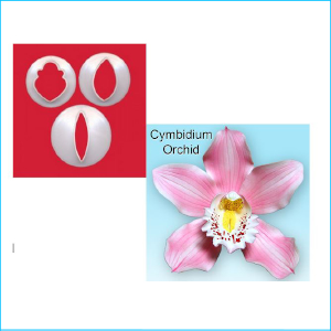 FMM Cutter Cymbidium Orchid Set 3