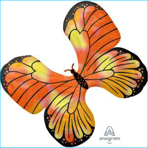 Orange and Yellow Butterfly Supershape