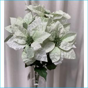 Poinsettier Bush Green 50cm XX8061GR