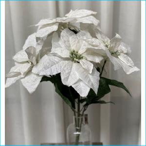Poinsettier Bush White 50cm XX8061WH