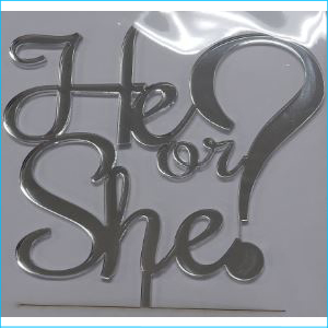 Cake Topper He or She? Silver