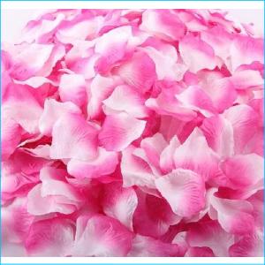 Silk Rose Petals Hot Pink Ombre 50g